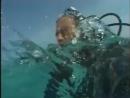 Курс PADI Open Water Diver часть 3 на русском языке
