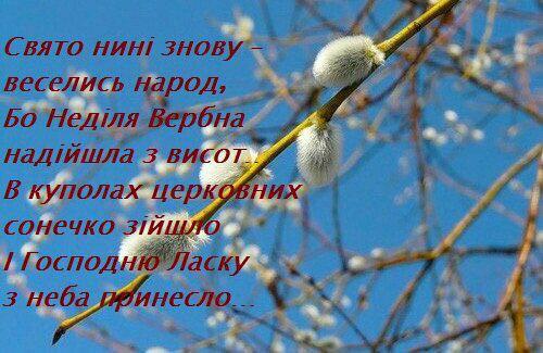 Фото №456239204 со страницы Карины Бондаренко