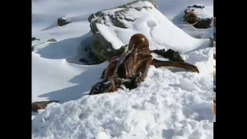 BBC: Убийство Ледяного Человека / The Iceman murder (2005)