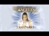 Los 7 Fuegos Sagrados - Lorena Tassinari (Meditación Guiada)