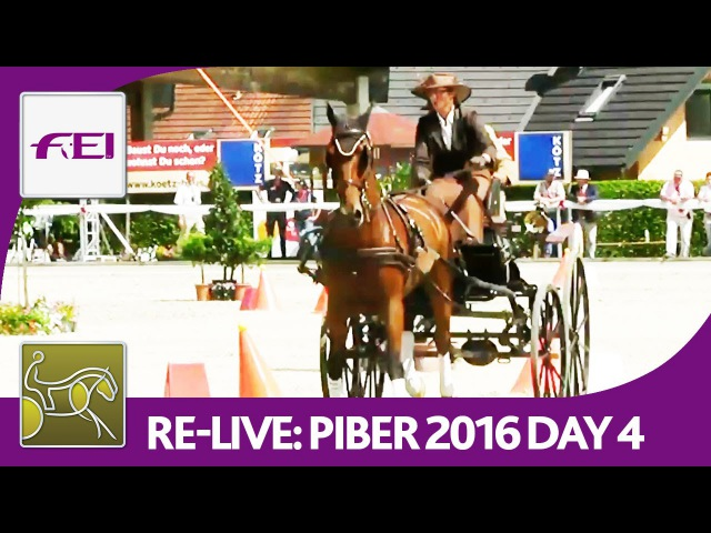 Re-Live | FEI World Championships For Single Driving | Obstacle Driving | Piber 2016