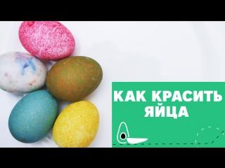 Два способа окрашивания яиц к Пасхе [eat easy]