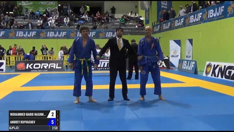 Mohammed Habib Naghm vs Andrey Kuyvashev ibjjfeuro17 bjj freaks смотреть онлайн без регистрации
