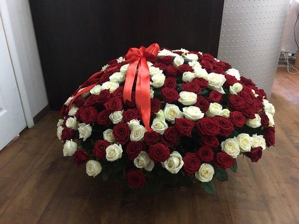 Заказ цветов 251 роза