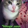 «ЧЕТЫРЕ ЛАПЫ»Помощь бездомным животным Назарово