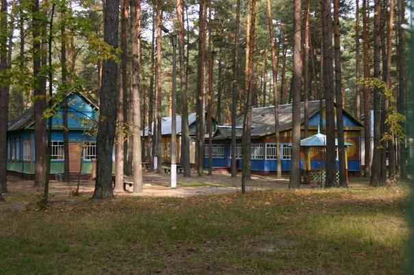 Тольяттинские родители смогут устроить своего ребенка в летний лагерь за полцены P1oZNOpibOo