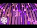 Infected Mushroom - Nutmeg Video Clip
