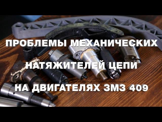 Проблемы механических натяжителей цепи на двигателях ЗМЗ 409
