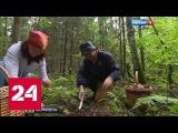 Россиянин нашел редкого ежевика