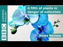 27. A fifth of plants in danger of extinction - News Review
