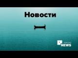Дайджест новостей электронной коммерции (2016. ноябрь. №4)