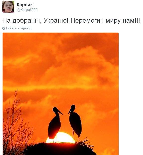 В декабре боевики 500 раз применяли запрещенное Минскими соглашениями вооружение, - Полторак - Цензор.НЕТ 3233
