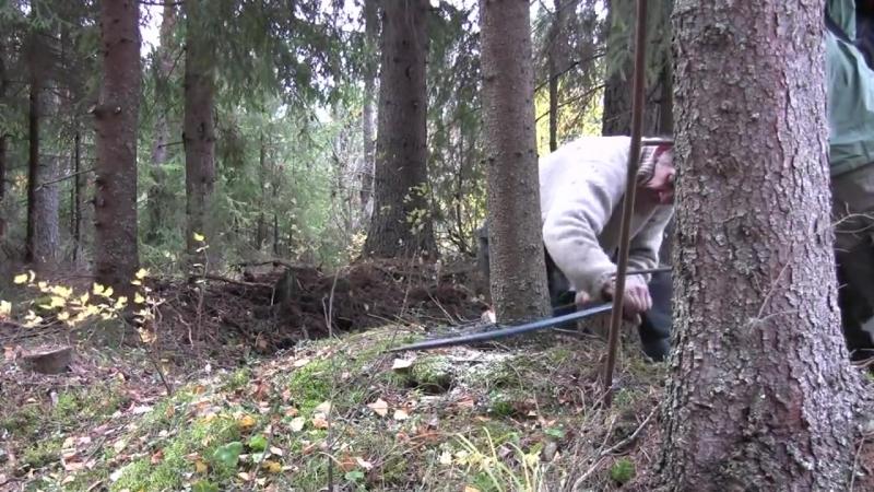 Reino Halin - metsäperinteen taitaja. Aihe 10 Luudan valmistus ja metsäperinteen jatkuvuus