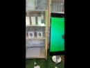 Xiaomi Yeelight Smart