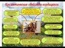 Тайна волшебства Тибета Презентация новинок Крем и эмульсия Гималайский бриллиант 18 02 2016 17