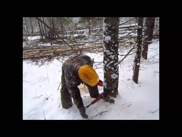Применение механического клина для валки леса