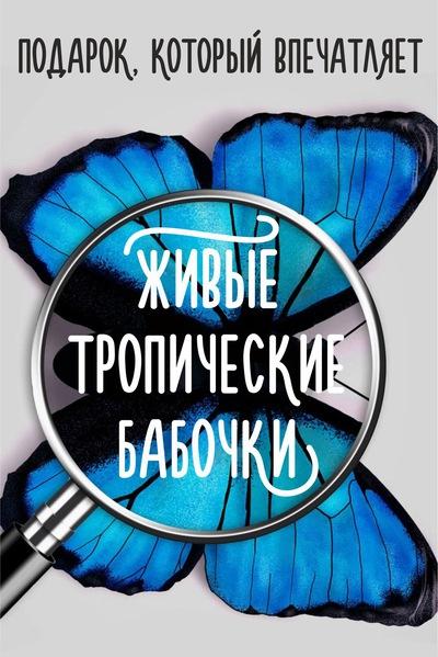 Евгений Васильков
