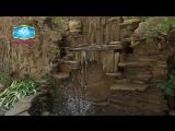 Коттедж Дельфин - отдых в Николаевке, на западном побережье Крыма