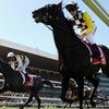 Приватный Betfair бот - 500$ в месяц на лошадках