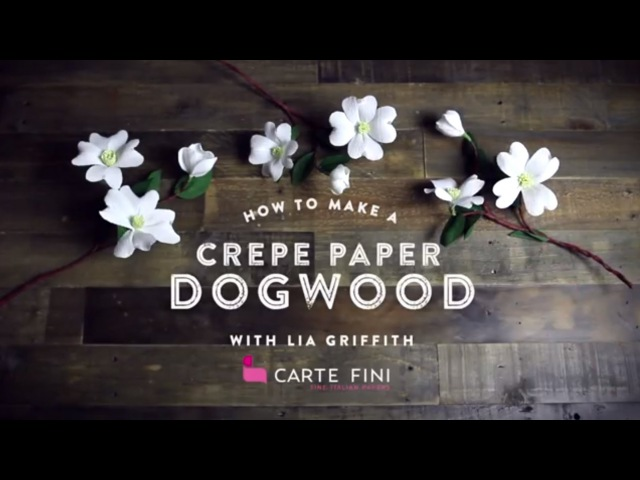 How To Make Paper Dogwood Branches