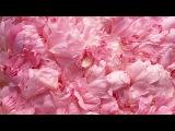 Школьный бант своими руками/тюльпаны из лент/канзаши