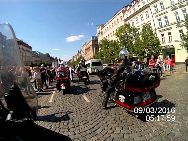 Vlci v Praze