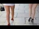 Горячие девушки в мини-юбках на высоких каблуках