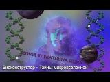 Биоконструктор - Тайны микровселенной (cover by Ekaterina Silina)