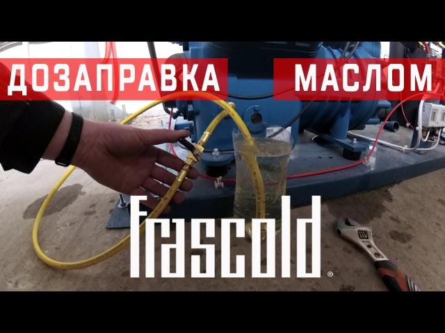 Дозаправка компрессора маслом | Полугерметичный поршневой компрессор Frascold V25-93Y
