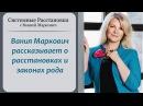 Вания Маркович рассказывает о расстановках и законах рода