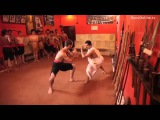 Did you know that Kalaripayattu is the Martial art of the Yogis