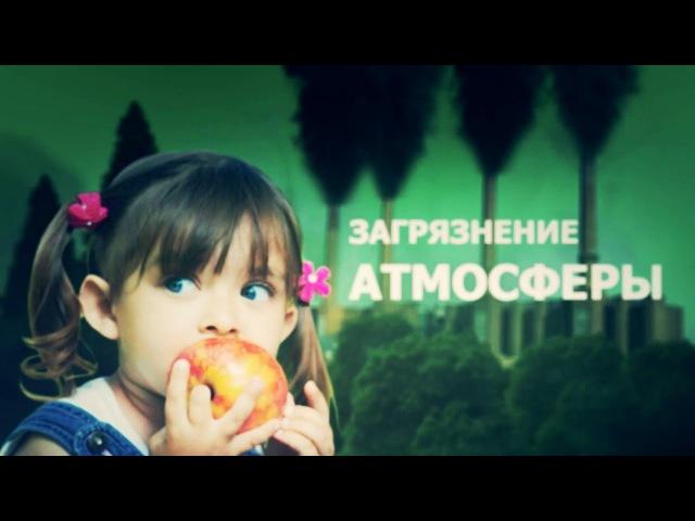 социальный ролик о проблемах экологии