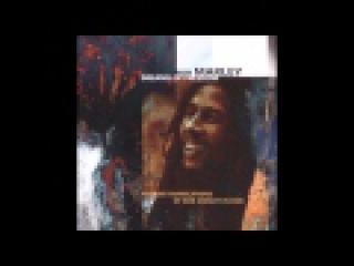 Bill Laswell - Dreams of Freedom: Ambient Translations of Bob Marley in Dub [Full Album]