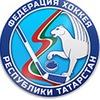 Федерация хоккея Республики Татарстан