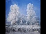 радмила караклаич снег идет (2)
