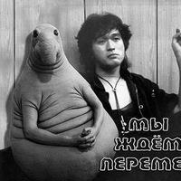 Илья Евсеев