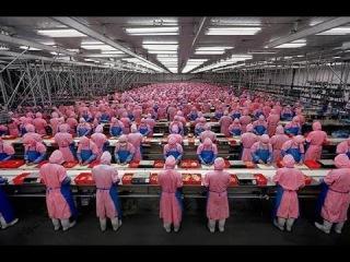 Мегазаводы в Китае. Люди Живут на Работе! Фильмы Дискавери
