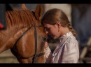 Казачья песня Конь боевой с походным вьюком