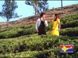 Tamil Song - Ninaivellam Nithya - Rojavai Thaalaattum Thendral