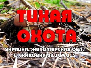 Тихая охота. Украина. Житомирская обл. с. Скаковка 28.10.2015