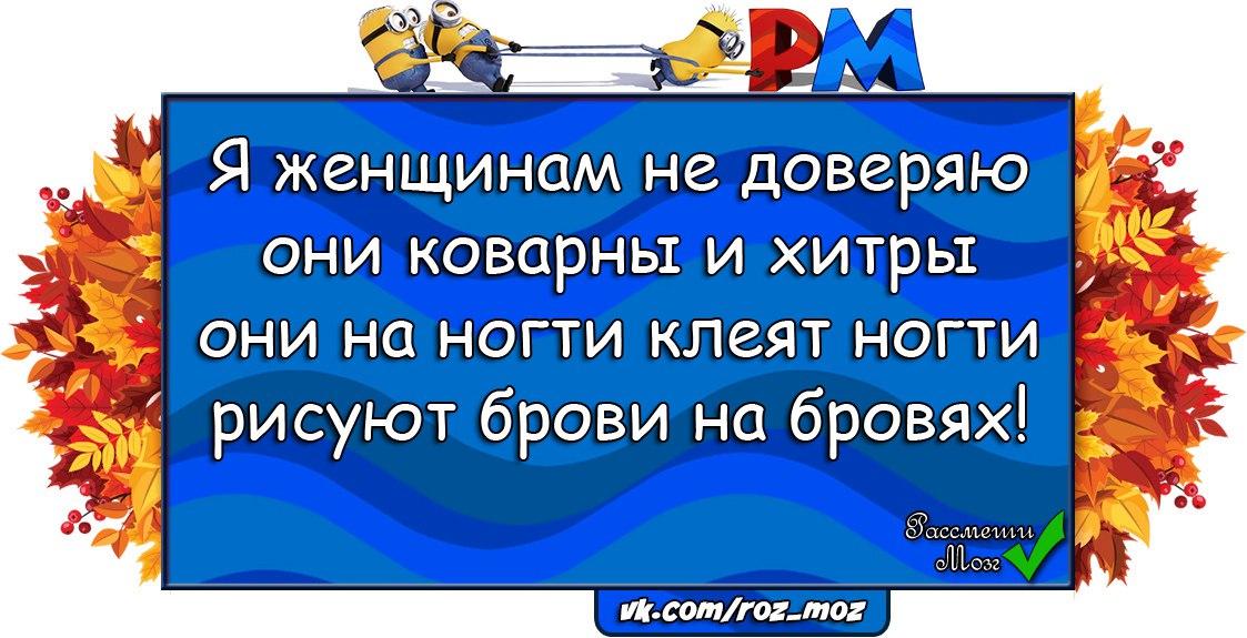 https://cs7057.vk.me/c636919/v636919240/29a80/w5yjMAVntes.jpg