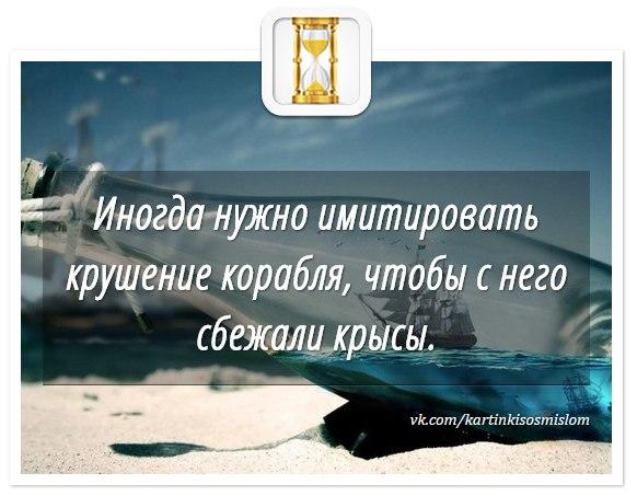 https://pp.vk.me/c636919/v636919564/28219/1ZFq-qaBhhM.jpg