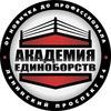 Академия Единоборств (на Ленинском)