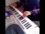 пианино живой
