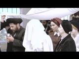 Строгая жизнь хасидов в ультра ортодоксальной еврейской общине.