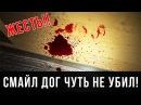 Вызов Духов - Смайл Дог Укусил За Ногу ! Потусторонние !! 18 Крипипаста / Smile Dog CREEPY