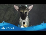 The Last Guardian | The Language of Companionship | PS4