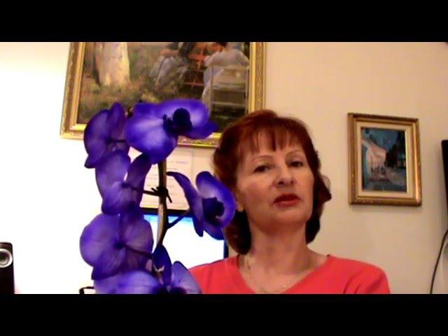 Секрет про СИНЮЮ ОРХИДЕЮ Цветок фаленопсис
