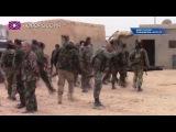 Армия Сирии освободила историческую цитадель Пальмиры