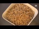 Блюдо дня. Полба с чечевицей и семенами подсолнечника